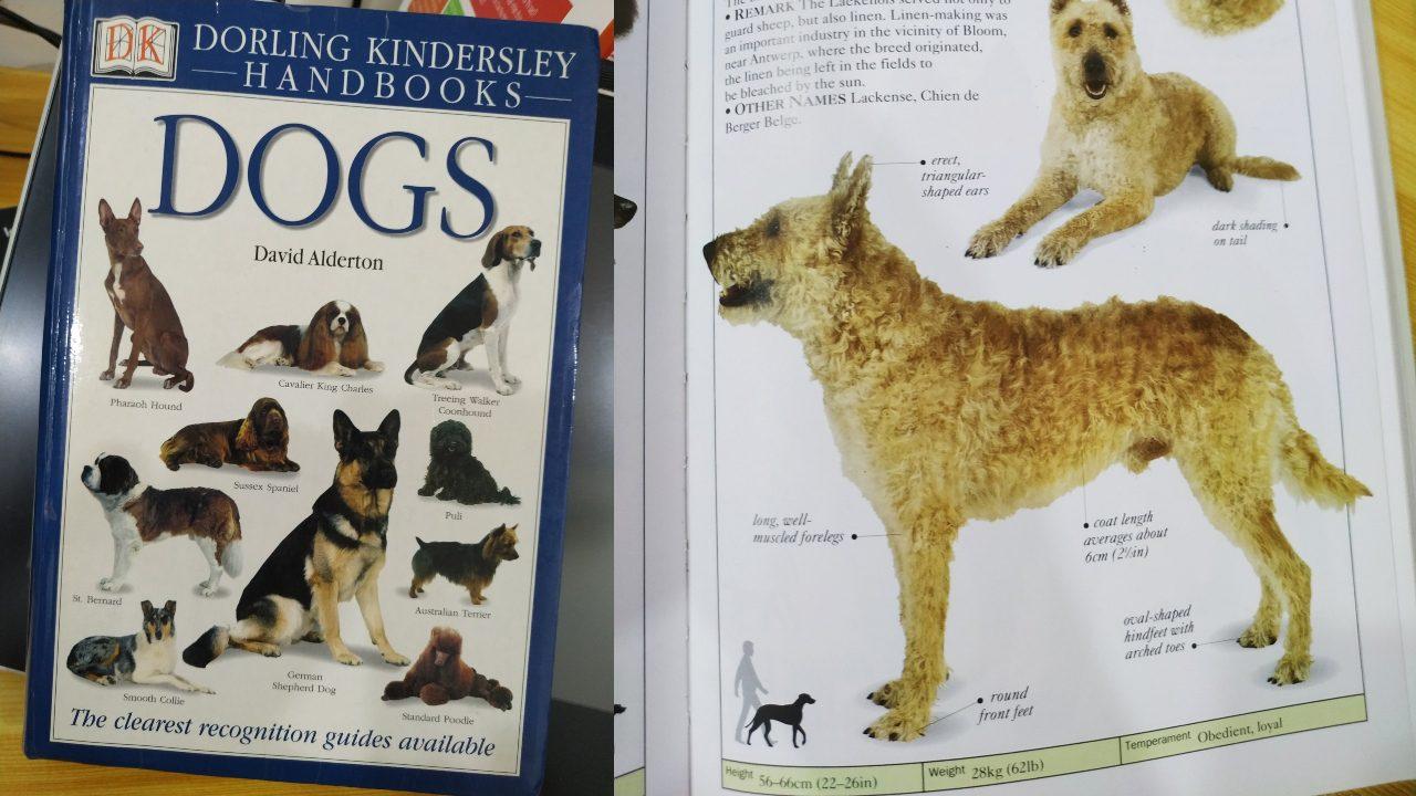Dogs của David Alderton: Cuốn cẩm nang chất lượng về các loài chó